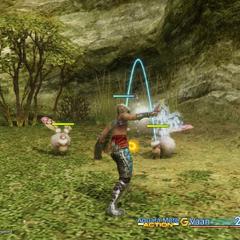 Player version of Aquara in <i><a href=