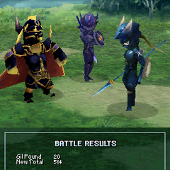 Golbez's victory pose (DS).