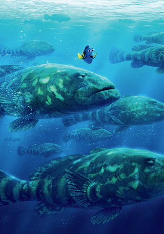File:Dory Fish Textless.png