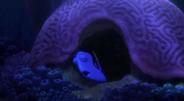 File:Brain Coral.png
