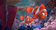 Marlin Holding Fins with Nemo