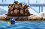 Dory Otters Textless
