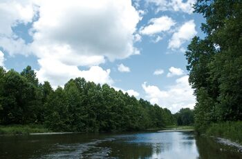 Owego Creek