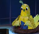 Bird Mom