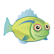 Hawaiian Hogfish (2)