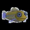 Blue Spot Grouper (2)