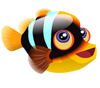 Clarkii Clownfish (baby)