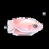 Kissing Fish (1)