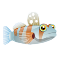 Prawn Goby (2).png