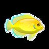 Lemonpeel Damsel (1)