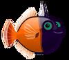 Blackhead Filefish (baby)