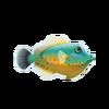 Orangehead Filefish (1)