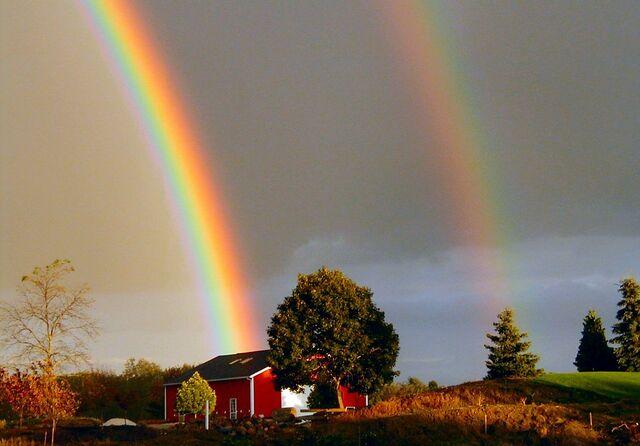 Ficheiro:Rainbow.jpg