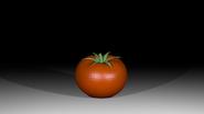 Promo Tomato