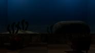 Room subocean
