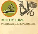 Moldy Lump
