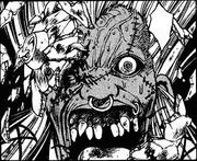 Kadotsu Face
