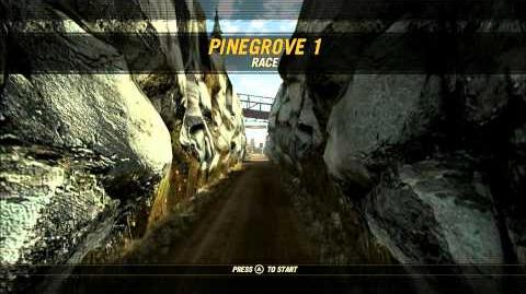 Pinegrove 1 overview