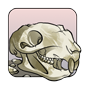 Squirrel Skull (old)