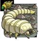 Parasitic Grub