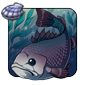 File:Sandyshore Sea Bass.png