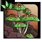 Diseased Fungus