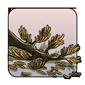 Dried Cedar Branch-Old