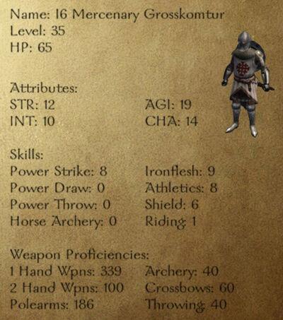 I6 Mercenary Grosskomtur