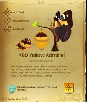 Yellow Admiral§Flutterpedia