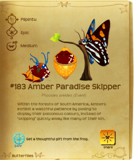 Amber Paradise Skipper§Flutterpedia