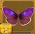 Purple Hairstreak§Headericon