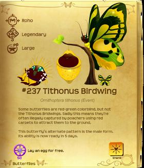 Tithonus Birdwing§Flutterpedia UpgradedAlt