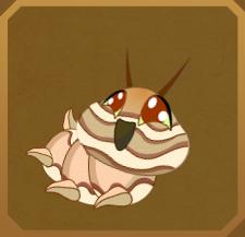 Sulphur Dotted Border§Caterpillar