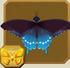 Pipevine Swallowtail§Headericon