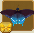 File:Pipevine Swallowtail§Headericon.png