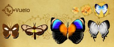 Vuelo Set§Flutterpedia