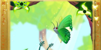 Green Charaxes