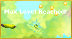 In Forest§Max Level Reached
