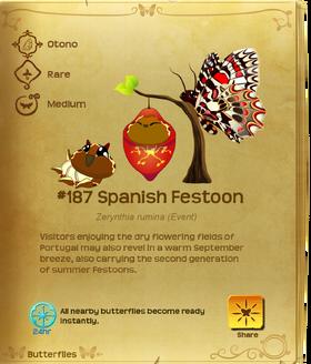 Spanish Festoon§Flutterpedia