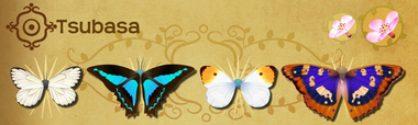 Tsubasa Set§Flutterpedia