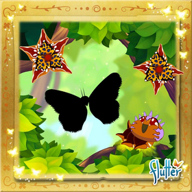 Map Butterfly§Facebook