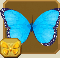 File:Blue Morpho§Headericon.png