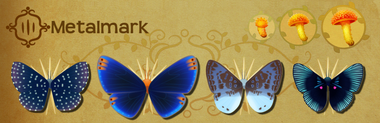 Metalmark Set§Flutterpedia