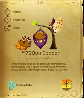 Bog Copper§Flutterpedia