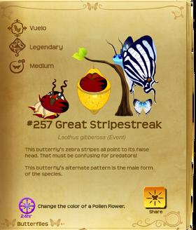 Great Stripestreak§Flutterpedia UpgradedAlt