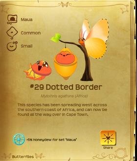 Dotted Border§Flutterpedia