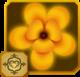 Acraea Set§AF2 100%