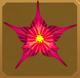 Turmeric Set§AF 100%
