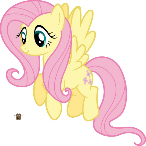 File:Fluttershy and Tiny Box Tim.PNG