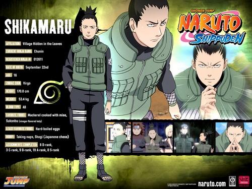 File:Naruto-characters-profiles-tsunade360-30617482-500-375.jpg